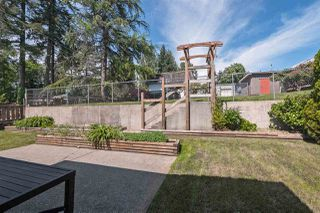 Photo 14: 753 EDGAR Avenue in Coquitlam: Coquitlam West House for sale : MLS®# R2405339