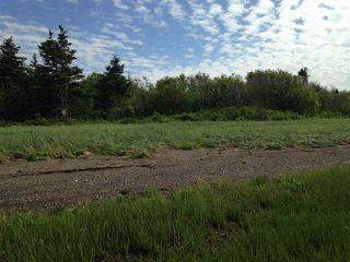Photo 6: Lot 2 Shore Road in Lower Barneys River: 108-Rural Pictou County Vacant Land for sale (Northern Region)  : MLS®# 202008057