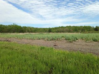 Photo 7: Lot 2 Shore Road in Lower Barneys River: 108-Rural Pictou County Vacant Land for sale (Northern Region)  : MLS®# 202008057