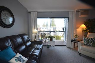 """Photo 13: 312 2277 N MCCALLUM Road in Abbotsford: Central Abbotsford Condo for sale in """"ALAMEDA COURT"""" : MLS®# R2521357"""