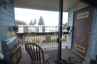 """Photo 14: 312 2277 N MCCALLUM Road in Abbotsford: Central Abbotsford Condo for sale in """"ALAMEDA COURT"""" : MLS®# R2521357"""