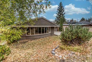 Photo 24: 4315 Anne Avenue SW in Calgary: Britannia Detached for sale : MLS®# A1057864