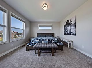 Photo 27: 219 BOULDER CREEK Bay S: Langdon Detached for sale : MLS®# C4266372