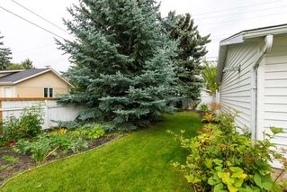 Photo 25: 9835 147 Street in Edmonton: Zone 10 House for sale : MLS®# E4172799