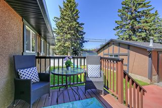 Photo 35: 532 ATHLONE Road SE in Calgary: Acadia Detached for sale : MLS®# A1018127