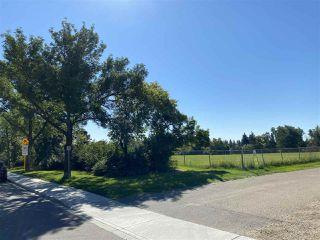 Photo 4: 11640 74 Avenue in Edmonton: Zone 15 Vacant Lot for sale : MLS®# E4209893