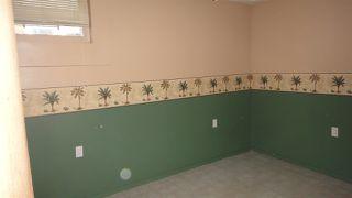 Photo 11:  in Edmonton: Zone 04 House for sale : MLS®# E4210468