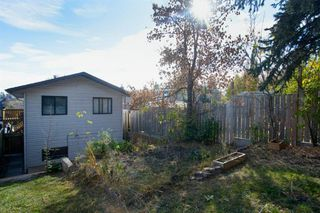 Photo 41: 1111 Maggie Street SE in Calgary: Ramsay Detached for sale : MLS®# A1042709