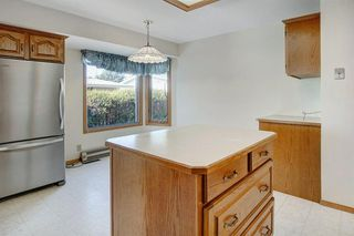 Photo 11: 5067 Nesbitt Road NW in Calgary: North Haven Detached for sale : MLS®# A1049278