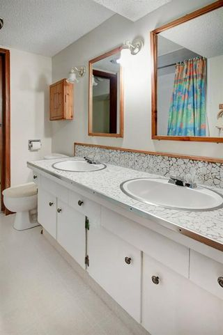 Photo 26: 5067 Nesbitt Road NW in Calgary: North Haven Detached for sale : MLS®# A1049278