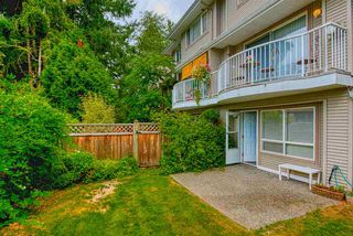 """Photo 14: 18 8289 121A Street in Surrey: Queen Mary Park Surrey Townhouse for sale in """"KENNEDY  WOODS"""" : MLS®# R2396850"""
