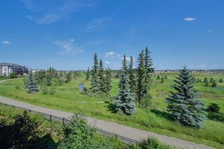 Photo 44: 1673 JAMES MOWATT Trail in Edmonton: Zone 55 House Half Duplex for sale : MLS®# E4200664
