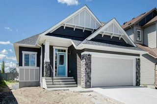 Photo 30: 352 BAYSIDE Crescent SW: Airdrie Detached for sale : MLS®# A1014396