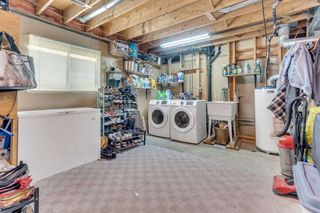 Photo 5: 2419 WAYBURNE Crescent in Langley: Willoughby Heights House for sale : MLS®# R2497647