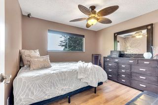 Photo 24: 2419 WAYBURNE Crescent in Langley: Willoughby Heights House for sale : MLS®# R2497647