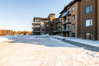 Photo 27: 401 5025 EDGEMONT Boulevard in Edmonton: Zone 57 Condo for sale : MLS®# E4183345
