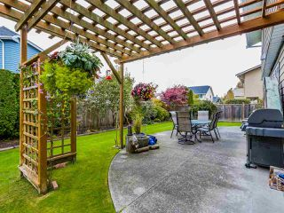 Photo 19: 10591 TREPASSEY DRIVE: Steveston North Home for sale ()  : MLS®# R2012787