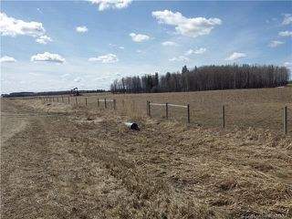 Photo 15: 50027 Highway 53 in Rural Ponoka County: Agri-Business for sale : MLS®# CA0193033