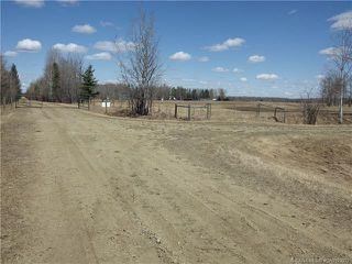 Photo 21: 50027 Highway 53 in Rural Ponoka County: Agri-Business for sale : MLS®# CA0193033