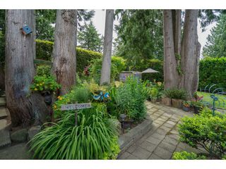 "Photo 22: 4519 SOUTHRIDGE Crescent in Langley: Murrayville House for sale in ""Murrayville"" : MLS®# R2473798"