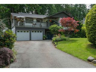 "Photo 1: 4519 SOUTHRIDGE Crescent in Langley: Murrayville House for sale in ""Murrayville"" : MLS®# R2473798"