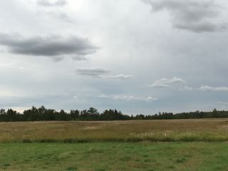 Photo 3: Twp 580 between RR 214 & 215: Rural Thorhild County Rural Land/Vacant Lot for sale : MLS®# E4205901