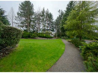 Photo 3: 318 12890 17 AV in Surrey: Home for sale : MLS®# F1408949