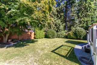 Photo 26: 21731 RIDGEWAY CRESCENT in Maple Ridge: West Central House for sale : MLS®# R2503645