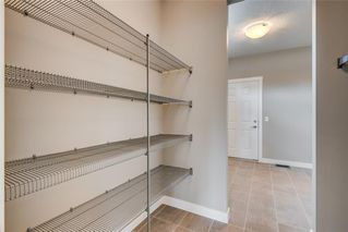 Photo 14: 251 West Grove Point SW in Calgary: West Springs Detached for sale : MLS®# A1056833