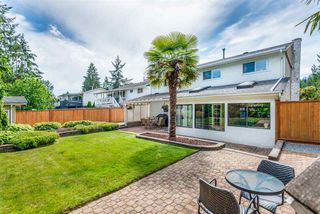 Photo 18: 3830 SOMERSET STREET in Port Coquitlam: Lincoln Park PQ House for sale : MLS®# R2382067