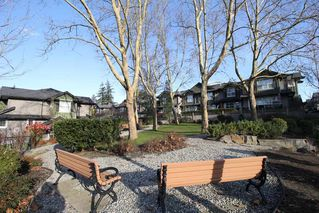 "Photo 15: 76 18199 70 Avenue in Surrey: Cloverdale BC Townhouse for sale in ""Augusta"" (Cloverdale)  : MLS®# R2422353"