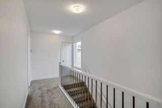 Photo 25: 3176 CHALLAND Lane in Edmonton: Zone 55 House for sale : MLS®# E4182742