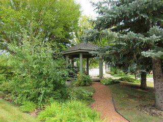 Photo 47: 1 PRESTIGE Point in Edmonton: Zone 22 Condo for sale : MLS®# E4214060