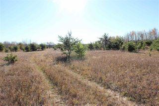 Photo 6: 6313 RR 432: Rural Bonnyville M.D. Rural Land/Vacant Lot for sale : MLS®# E4216988