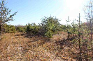 Photo 5: 6313 RR 432: Rural Bonnyville M.D. Rural Land/Vacant Lot for sale : MLS®# E4216988
