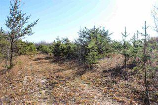 Photo 4: 6313 RR 432: Rural Bonnyville M.D. Rural Land/Vacant Lot for sale : MLS®# E4216988