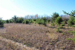 Photo 7: 6313 RR 432: Rural Bonnyville M.D. Rural Land/Vacant Lot for sale : MLS®# E4216988