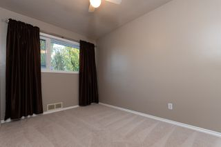 Photo 19: 10507 62 Street in Edmonton: Zone 19 House for sale : MLS®# E4217969