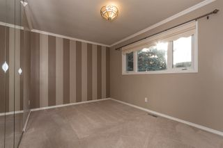 Photo 15: 10507 62 Street in Edmonton: Zone 19 House for sale : MLS®# E4217969