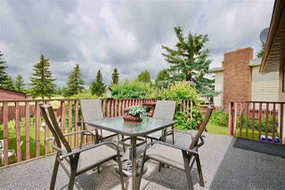 Photo 25: 154 Willow Drive: Wetaskiwin House for sale : MLS®# E4165500