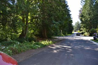 Photo 4: 12755 14 Avenue in Surrey: Crescent Bch Ocean Pk. Land for sale (South Surrey White Rock)  : MLS®# R2479842