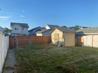 Photo 23: 5110 ERIN Place SE in Calgary: Erin Woods Detached for sale : MLS®# A1020594