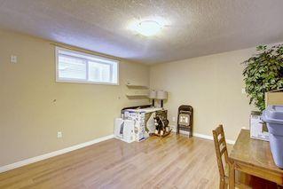 Photo 22: 384 NEW BRIGHTON Drive SE in Calgary: New Brighton Detached for sale : MLS®# A1029027
