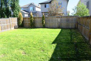 Photo 28: 384 NEW BRIGHTON Drive SE in Calgary: New Brighton Detached for sale : MLS®# A1029027