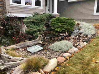 Photo 2: 344 SUMMERSIDE Cove in Edmonton: Zone 53 House for sale : MLS®# E4217266