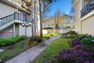 "Photo 20: 6 9060 GENERAL CURRIE Road in Richmond: McLennan North Townhouse for sale in ""Jimmy's Garden"" : MLS®# R2399875"