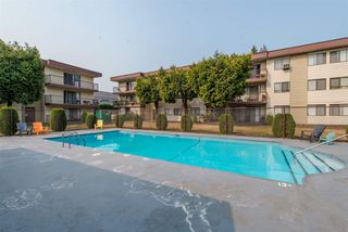 """Photo 14: 128 1909 SALTON Road in Abbotsford: Central Abbotsford Condo for sale in """"Forest Village"""" : MLS®# R2410831"""