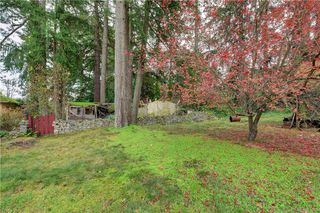 Photo 10: 8607 East Saanich Rd in NORTH SAANICH: NS Bazan Bay Single Family Detached for sale (North Saanich)  : MLS®# 829046