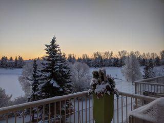 Photo 40: 17 925 Picard Drive in Edmonton: Zone 58 House Half Duplex for sale : MLS®# E4186523