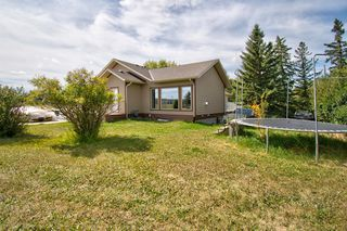 Photo 46: 291092 Yankee Valley Boulevard: Airdrie Detached for sale : MLS®# A1028946